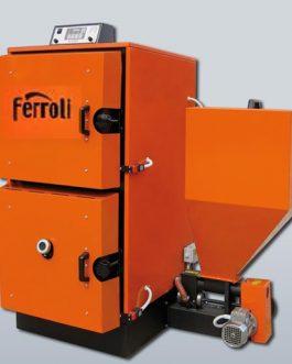 Caldera de biomasa Ferroli Ares 60KW